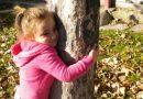 A scuola cercando tracce nel bosco…
